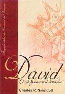 David, omul pasiunii si al destinului