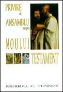 Privire de ansamblu asupra Noului Testament (fara Indrumar de studiu)