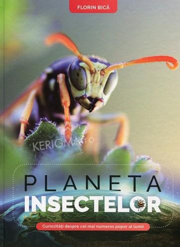 Planeta insectelor. Curiozități despre cel mai numeros popor al lumii