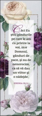 Magnet Ieremia 29:11