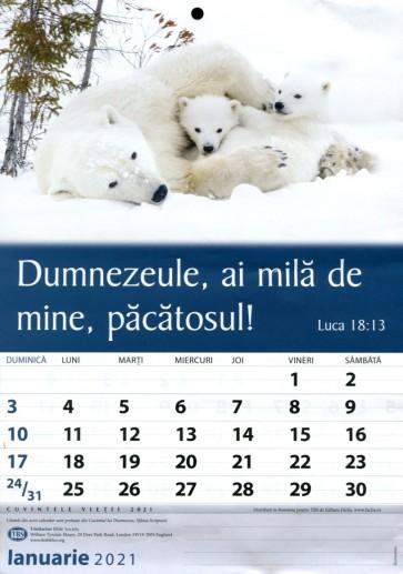 Calendar 2021 lb. rom. (TBS)