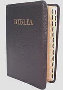 Biblia [editie deLuxe] MJ-N-S. SBR