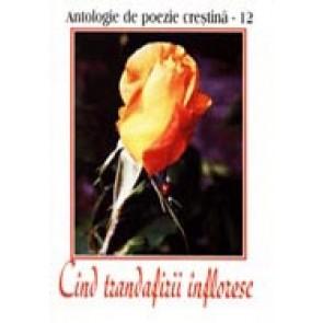 Cand trandafirii infloresc