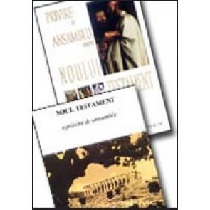 Privire de ansamblu asupra Noului Testament + Indrumar de studiu