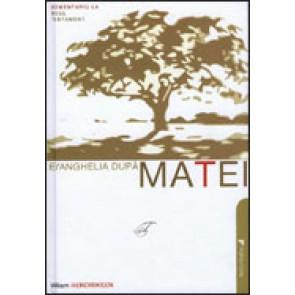 Comentariu la Noul Testament. Evanghelia dupa Matei