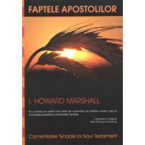 Faptele apostolilor. Introducere si comentariu