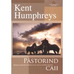 Pastorind caii. Intelegerea planului lui Dumnezeu in vederea modelarii liderilor