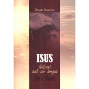 Isus boteaza intr-un singur Duh Sfant. Pe cine? Cand? Cum? De ce?