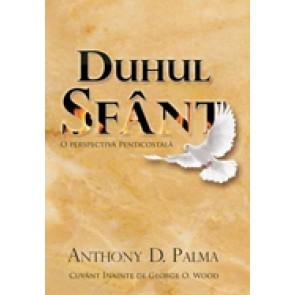 Duhul Sfant. O perspectiva penticostala