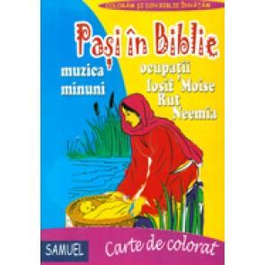 Pasi in Biblie