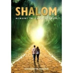 Shalom. Minuni in Tara Sfanta