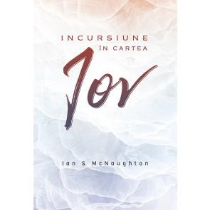 Incursiune in cartea Iov