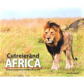 Cutreierând Africa. Să facem cunoștință cu animalele din savană