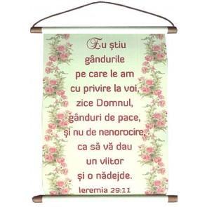 Pergament_Ieremia 29:11