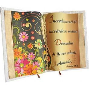 Carte_Proverbe 16:3