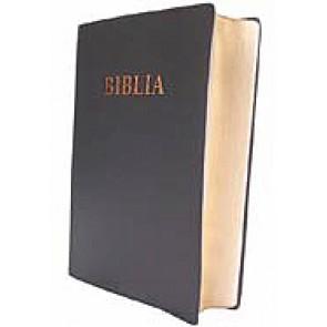 Biblia [editie deLuxe] MJ-N-S