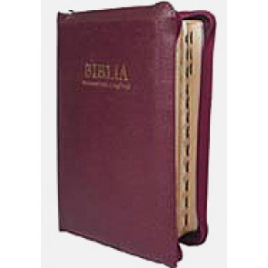Biblia. Cu concordanta si explicatii [editie deLuxe] MR-M-F