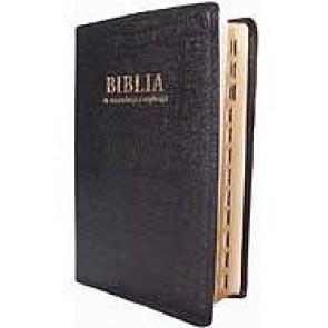 Biblia [editie deLuxe] MR-N-S. SBR
