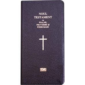 Noul Testament cu psalmi, proverbe si indrumari