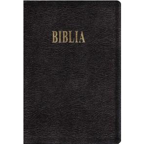 Biblia GBV 2001 – editie de lux